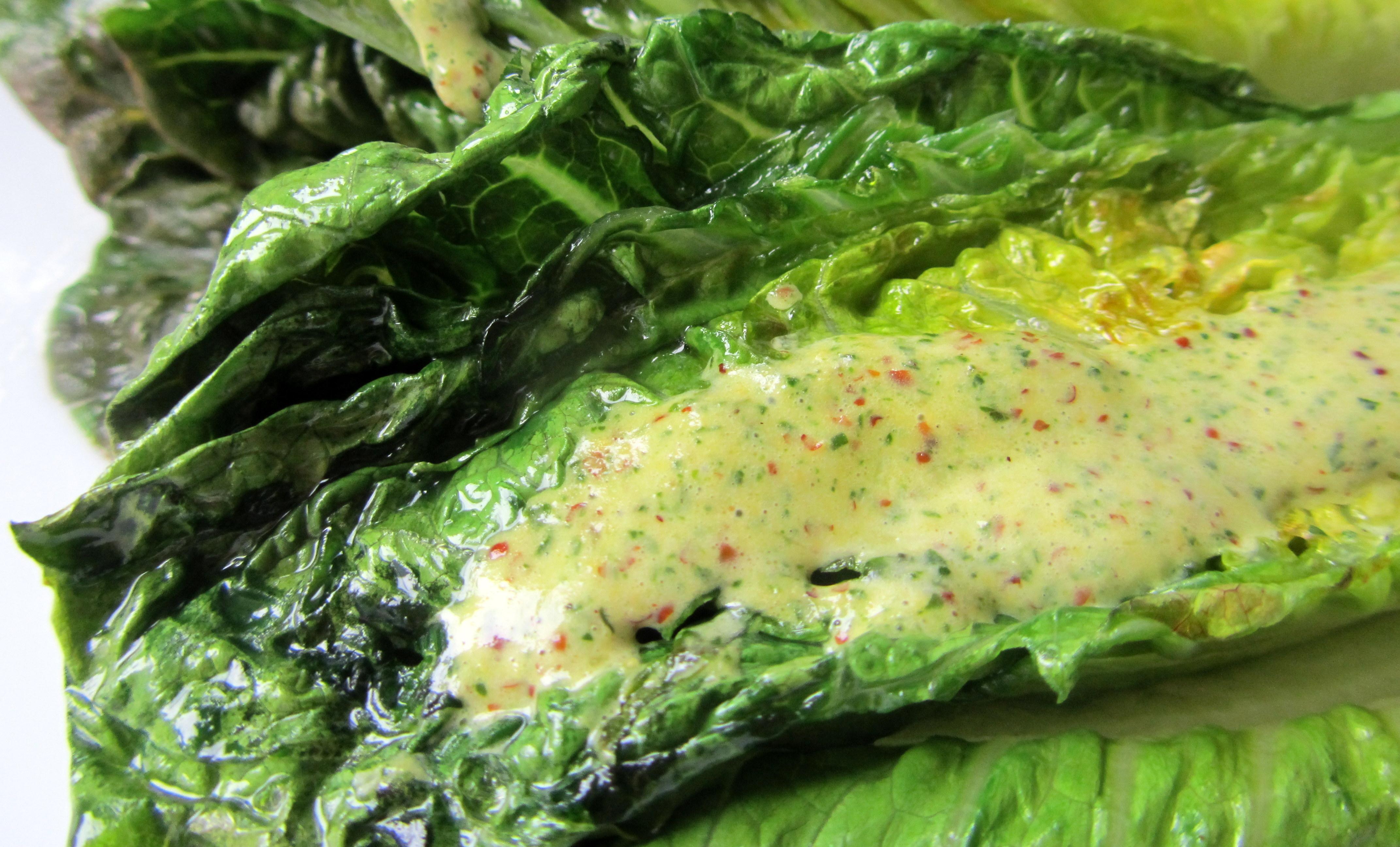 ... salad vegetarian tags ferran adria herbs lettuce salad vinaigrette